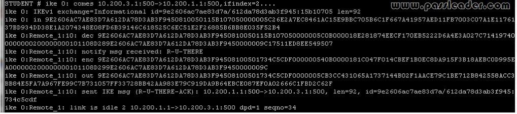 passleader-nse5-dumps-1221